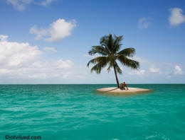 single palm tree on a small island in the ocean with a castaway sitting under the palm