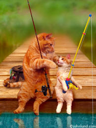 Stock photo and greeting card picture of a cat fishing with his son the kitten on the end of a dock