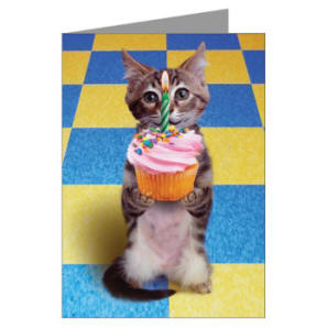 Kitty Cupcake Greeting Cards For Sale Online