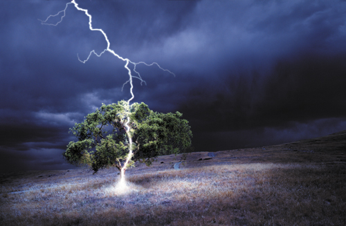 stock photo of lightning striking an oak tree made with Adobe Photoshop