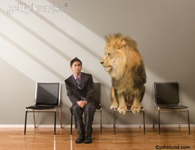 Picture of Lion looking at fearful ethnic businessman representing danger