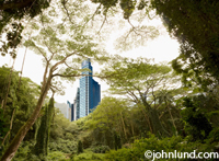 Futuristic City - Looking through rain forest vegetation we city the modern highrises of a futuristic city. Science fiction photo.