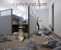 In this funny picture, a businessman wears a horrified look as he eyes the cubicle office corridor filled with snapping croccodiles symbolizing risk, adversity and challenge.