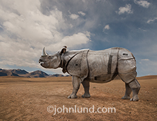 Rhinos are known for their amor like skin and are iconic symbols of ruggedness and durability, a concept further enhanced in this rhinoceros photo that shows the beast with enhanced protection and steel rivets.