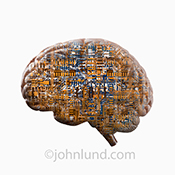 A human brain is double exposed with computer circuitry in this artificial intelligence stock photo.