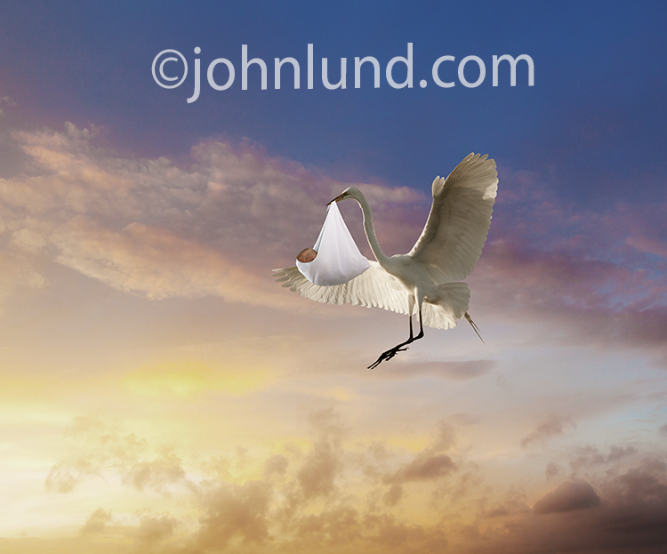 A stork, well, really an Egret, descends with a bundled baby in it's beak in a stock photo of the stork delivering a baby fame...but with a modern, fresh feel.