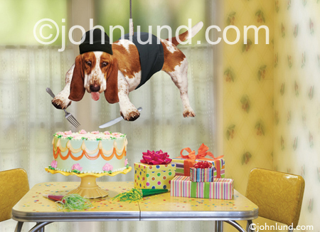 Mission impossible a basset hound suspended from a cable attempts mission impossible a basset hound suspended from a cable attempts to steal a slice of birthday cake in this funny birthday card picture bookmarktalkfo Gallery