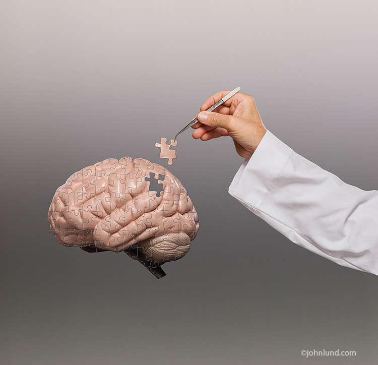 A hand with tweezers, and wearing a white lab coat, puts the final puzzle piece into place in a human brain indicating success in the study and understanding of the human brain.