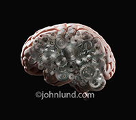 A human brain on a black background fades to transparent reveal an inner assembly of gears in a metaphor for thinking, processing and creative thought.