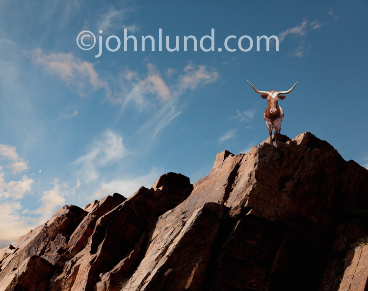 In this picture a bull, actually a Texas Long Horn Steer, stands atop a rocky mountain cliff against a blue afternoon sky.