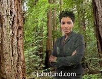 An African American businesswoman stands in a forest, her body semi-translucent, in a photo about environmental issues, responsible ecological custodianship, and green business.