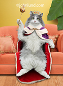 A long-haired anthropomorphic cat sits on a couch wearing a purple and red fur-lined cape and a jeweled crown while hold a scepter...a queen for at least a day and a purrfect  image for a mother's day greeting card and stock photo.