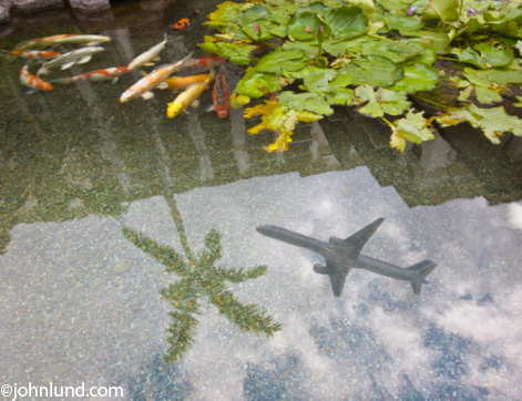 Tropical vacation travel shown in the reflection of a for Koi pond jets