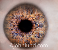 Computer circuitry is seen embedded in the iris of an eye in this extreme close up stock photo about biotechnology, science and artificial intelligence.