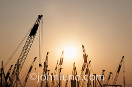 A forest of construction cranes are silhouetted against a sunset in a stock photo about construction, infrastructure, and possibility.