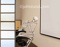 A human skeleton is in the thinker pose before an empty white board in a research facility in this image about difficult challenges.