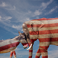 A Democratic donkey goes head to head with a Republican Elephant in a humorous political stock photo about politics, democracy, elections and government.