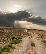 A winding dirt road leads over a ridge beneath a sky of