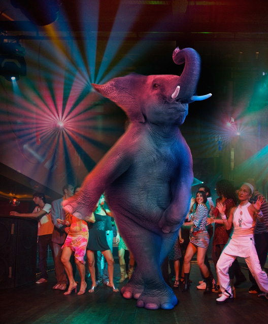 Picture of an elephant disco dancing