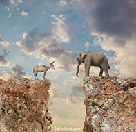 Identity politics is seen in this image of a democrat donkey and republican elephant standing on opposite cliffs in a standoff in this humorous photo about partisan politics in the United State of America.