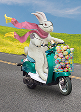 An Easter bunny zips along on a scooter with a basket full of decorated eggs on his way to Easter Sunday in a funny stock photo and greeting card image.