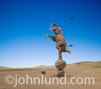 An elephant balances precariously on stacked rocks in a concept stock photo about skill, agility, balance and the unexpected, especially as seen in large companies.