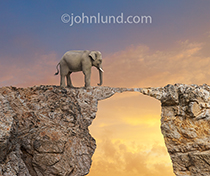An elephant pauses before a tenuous rock bridge deciding whether to proceed across the risky structure in a photo about decisions, risk and political commentary (elephants representing the Republican party).