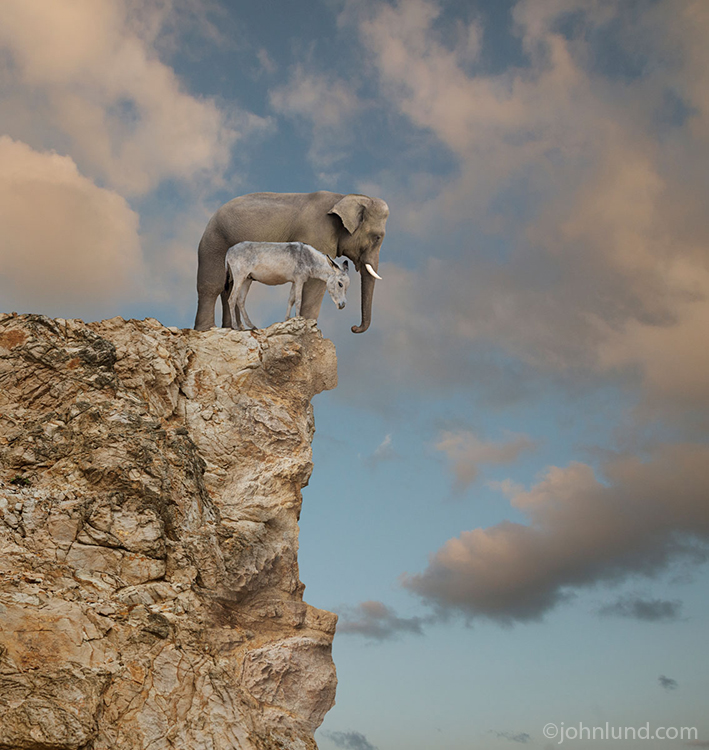 An Elephant (Republicans) and a donkey (Democrats) peer over the edge of a cliff in a funny political commentary stock photo about partisan politics in America.