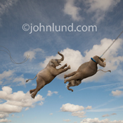 Two elephants perform a flying trapeze act high in the sky in a funny and unique animal picture.
