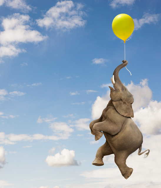 Photograph of an elephant hanging in the sky from a small party balloon