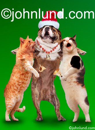 Christmas Caroling Pets Funny Animal Stock Pictures.