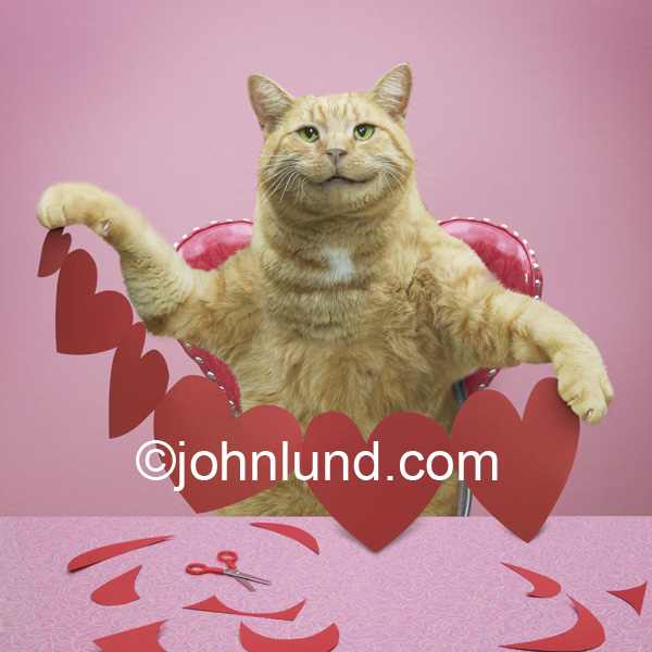funny animal photo and stock picture of a cat with a string of read valentine hearts he has cut out of paper with scissors.