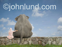 A young girl sits on a rock wall wtih her arm around her friend, an elephant, sitting next to her. Picture of a seated elephant.