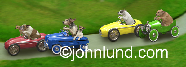 Funny picture of dogs racing toy cars, pedaling as fast as thier little paws can move! Cute little puppies riding cute little toy cars. Puppies having fun!