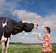 A happy cow shares an ice cream cone with a surprised little girl in this humorous Holstein image.