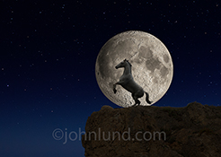 A white horse rears on the edge of a cliff against a huge moon in a mystical, story book stock photo.
