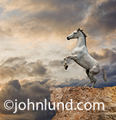 A white horse rears up at the edge of a cliff with a background of storm clouds in a concept stock photo and greeting card image with am inspirational feel.