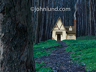 A solitary house with a curl of smoke coming from its chimney sits in the dark and scary woods in this photo.