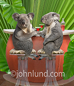 In this happy birthday friend image two funny anthropomorphic Koala bears enjoy cocktails at a Tiki bar.