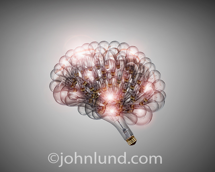 Light bulbs have been used to create a human brain that represents ideas, creativity and possibly even artificial intelligence.