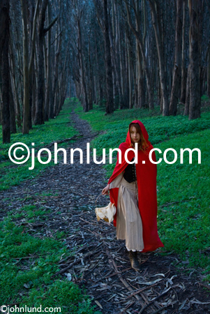 Stock photograph of little red riding hood on a trail through the woods and carrying a picnic basket in a classic fairytale. Little Red Riding Hood Pics.