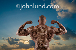 In this photo a body builder, viewed from behind, is flexing his muscles while through his skin you can see gears, chains, sprockets and cogs in a metaphorical image about bio-engineering, the human body as a machine, and the mechanical aspects of the hum