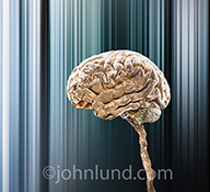 Artificial intelligence is portrayed in this stock photo of a metallic human brain in a futuristic background.