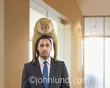 A businessman stand's in a corporate lobby with a monkey on his back in a concept stock photo about problems, challenges and obstacles in the business world.