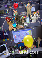 Cats and dogs are having a birthday party in a business environment of cubicles.