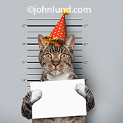 A cat wears a party hat and an expression of disbelief as he poses for a police mug shot in a humorous stock photo for advertising,editorial or greeting card use.