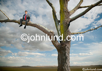 Photo of a man sitting on a branch, literally out on a limb.  The man is wearing business attire indicating business risks. Picture of a businessman sitting in a tree. Cloudy blue sky.