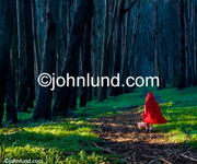 Picture of little red riding hood wearing a red hooded cape and walking into a deep, dark forest in a classic fairytale. Photos of Little Red Riding Hood.