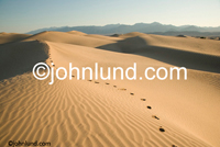 Stock shot of tracks leading into the distance across sand dunes indicating a journey, a trip or or a trek and possibly self-discovery. Picture of footprints in the desert.