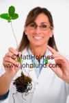 Female scientist holding out a plant with its root ball intact and a small green pill. Respresents plant based extracts. Science and medicine in technology pics.